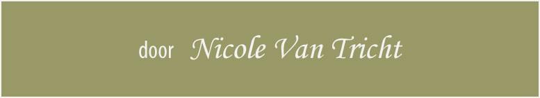 De finale creaties & realisaties van Nicole Van Tricht